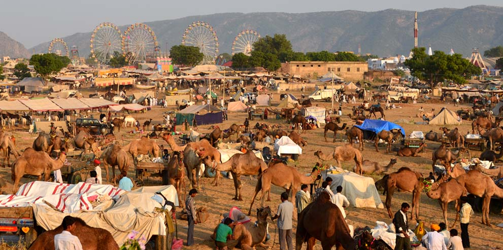 <strong>Pushkar Fair</strong> - Pushkar Camel Fair Ground