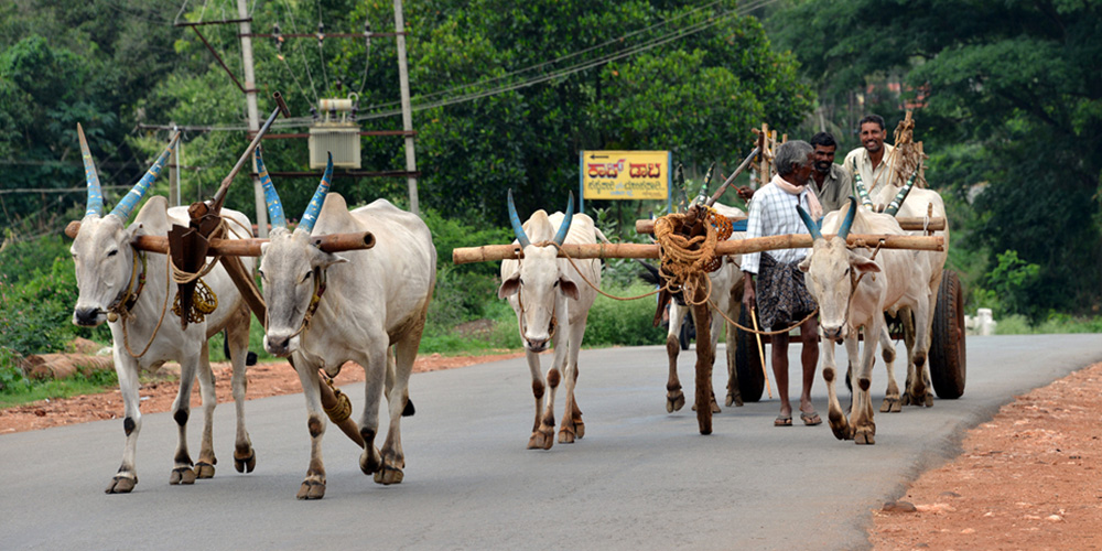 Villagers in Andhra Pradesh