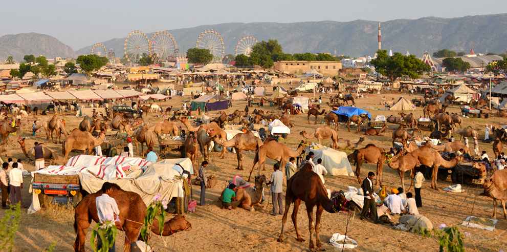 <strong>Pushkar</strong> - Pushkar Camel Fair