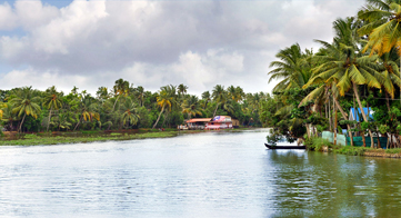 Backwater, South India