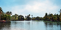 Backwater - 5, Kerala  -