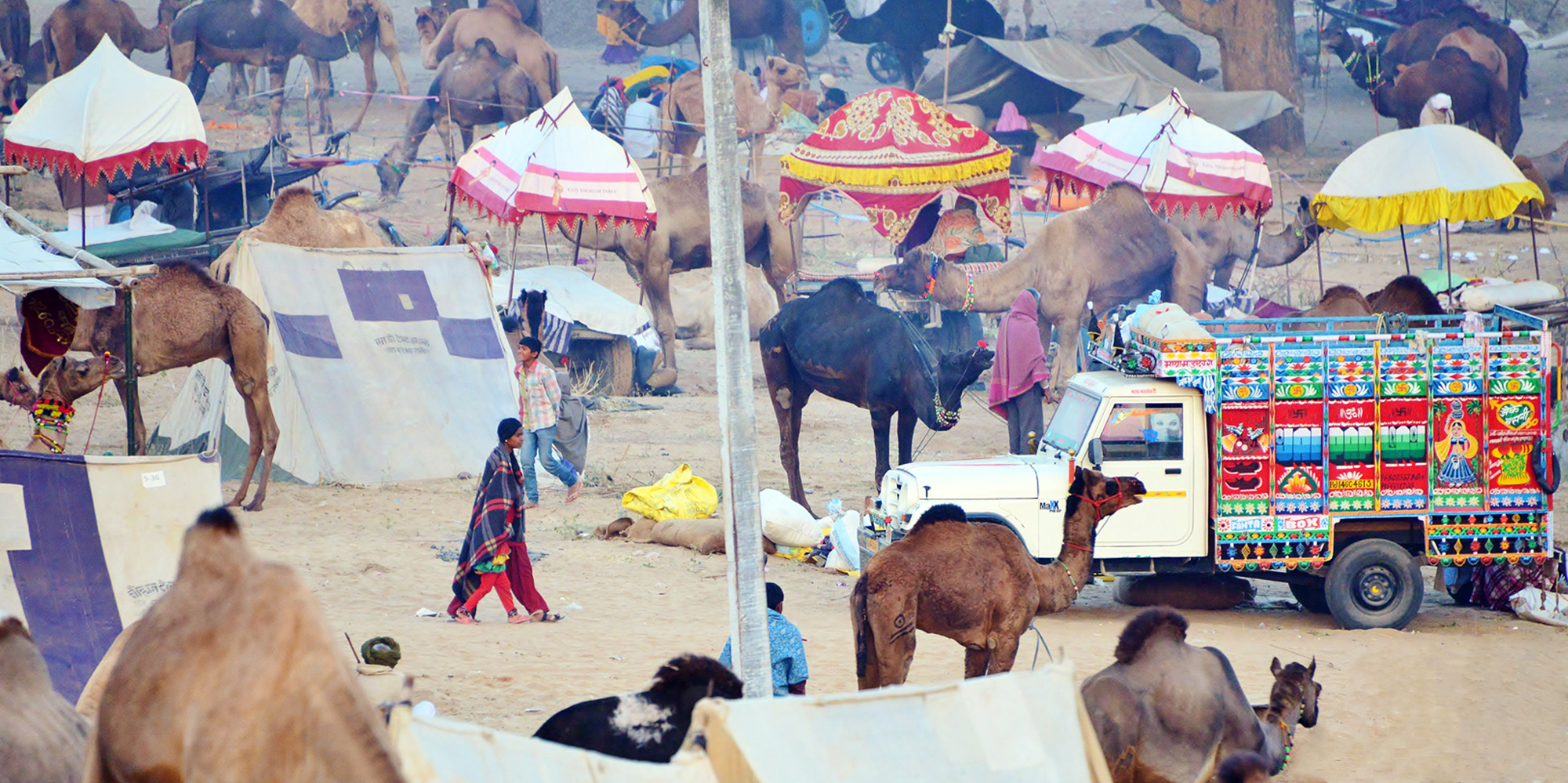 <strong>Pushkar Fair - 1</strong> -