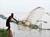 Fisherman flying net - 1, Kochi -