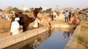 Reflections of Pushkar.  This photo was taken during one of our explorations of the Pushkar fair