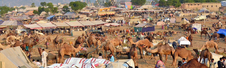 Village life, India