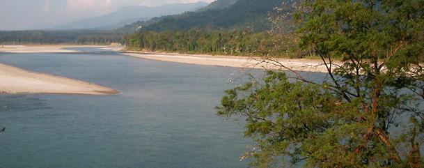 Manas Wild Life Sanctuary,