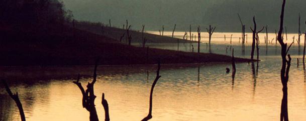 Western Ghats   ,