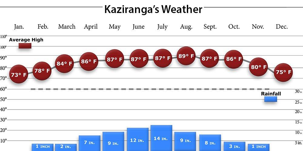 Kaziranga Weather